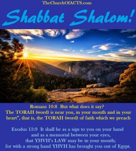 Shabbat Shalom!  Study To Show Yourself Approved