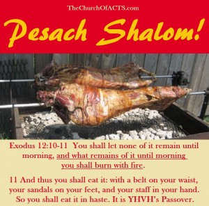 Pesach Shalom!  Born Again By YHVH's Spirit