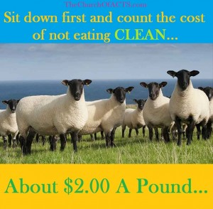 CLEAN Grassfed Lamb Is CHEAP!