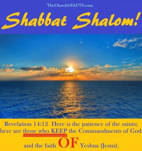Lay Hold Of The Faith Of Yeshua And DO IT