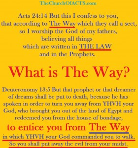 TheWAYActs24-14Deuteronomy13-5