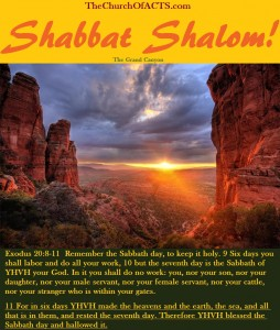 Shabbat Shalom!  Keep Torah And Be Like Him!