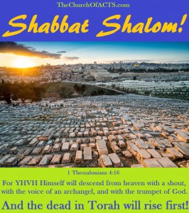 Shabbat Shalom, The Dead In Torah Will Rise First!