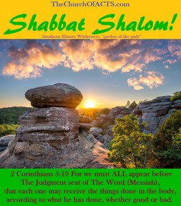 Shabbat Shalom! – EVERYONE Submits To The Judgment