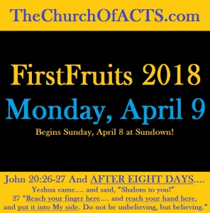 Yeshua Was And We ARE FirstFruits On The 8th Day! – PT2