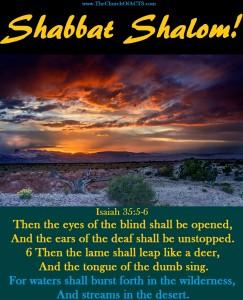 Shabbat Shalom!  Desert Places Rejoice!