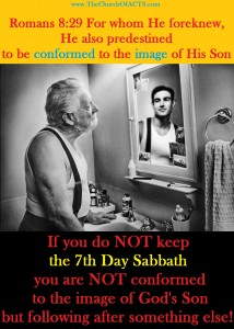 Romans 8:28  Be Conformed To The EXACT Image Of Messiah!