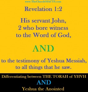 The Word/Torah and The Son Of God Revelation