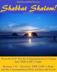 Shabbat Shalom!  THE LAW Is The Gospel