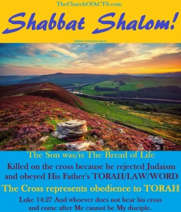 Shabbat Shalom!  The Bread Of Life, TORAH