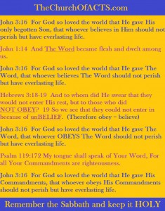John3-16John1-14Psalm119-172Hebrews3-18-19