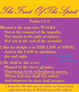 Obedience to THE LAW Produces Fruit Of The Spirit