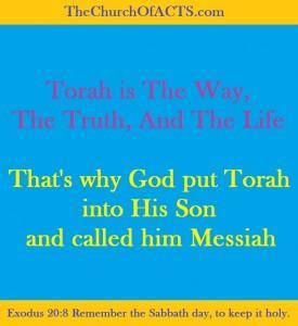 TorahWayTruthLife